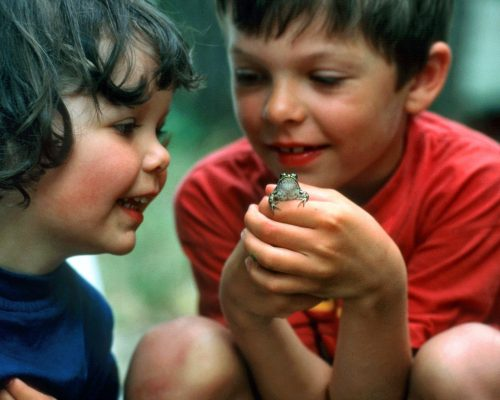 Two_kids_discovering_the_fascinating_nature_2